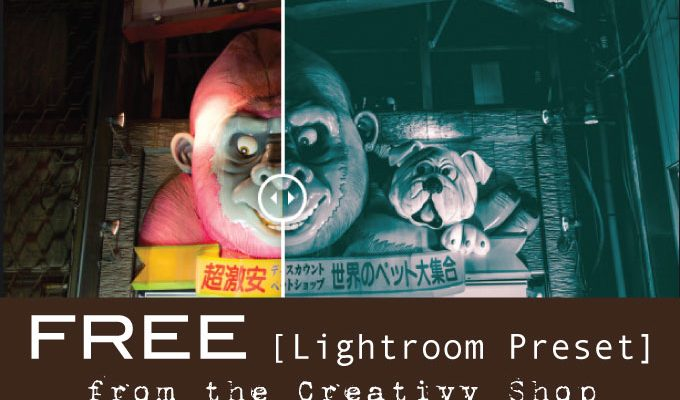 Free Lightroom Preset for Night Photography from Creativv