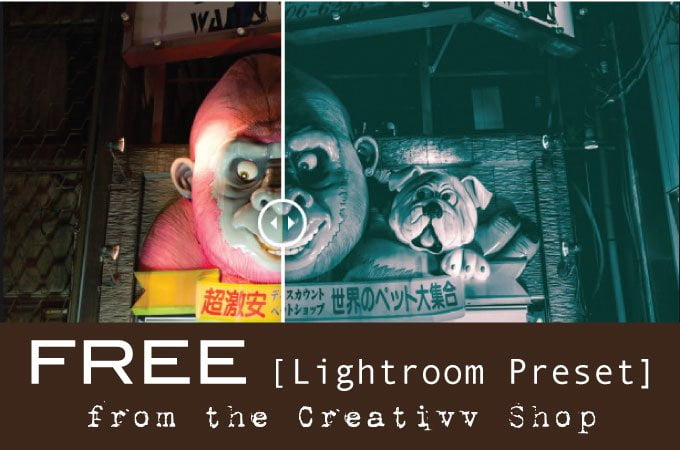 free-lightroom-preset-from-the-creativv-shop-pin